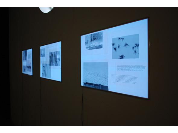 Прямая речь: Выпускники Института проблем современного искусства. Изображение № 37.
