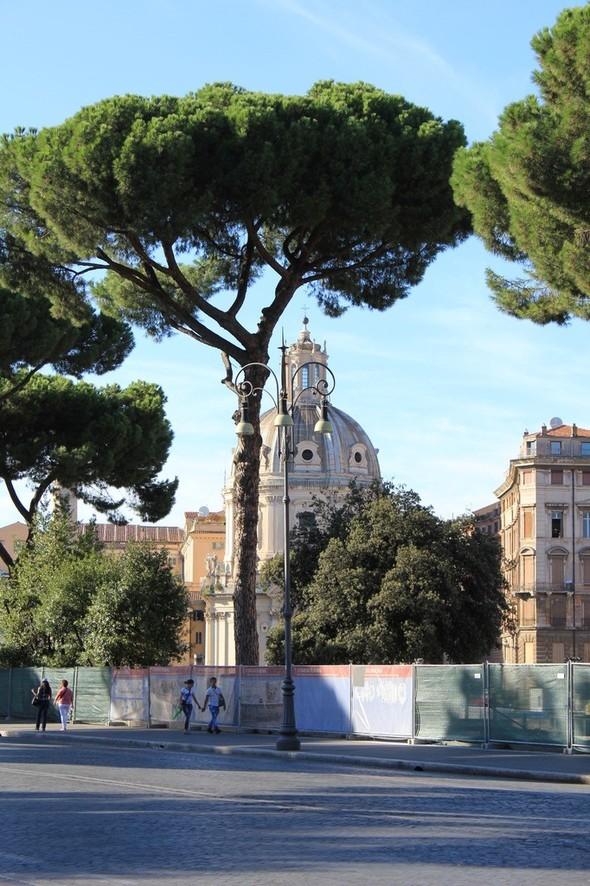 Моя Италия..mio amore.... Изображение № 14.