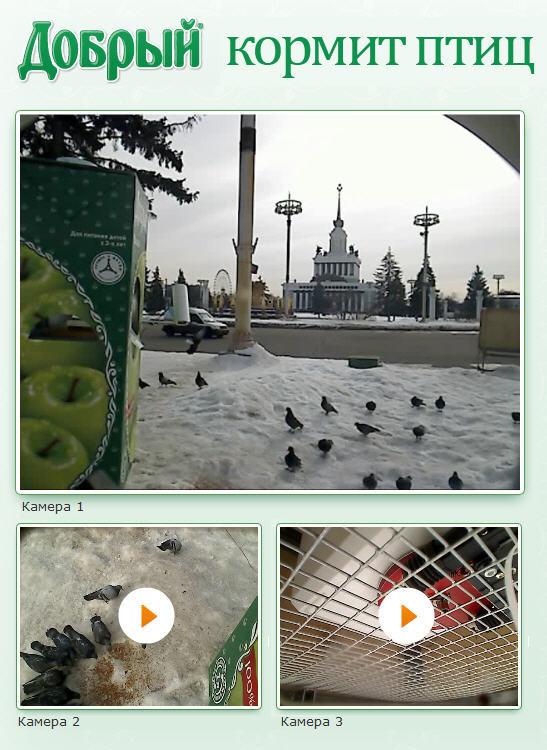 Будьте добры, покормите птиц!. Изображение № 3.