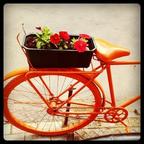 Пока Москва не пересела на яркие велосипеды, в Одессе ими оформляют кафе. Изображение № 7.