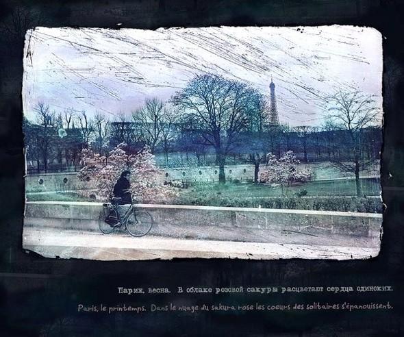 """Выставка Аси Немчёнок """"Impressions franaises"""". Изображение № 6."""