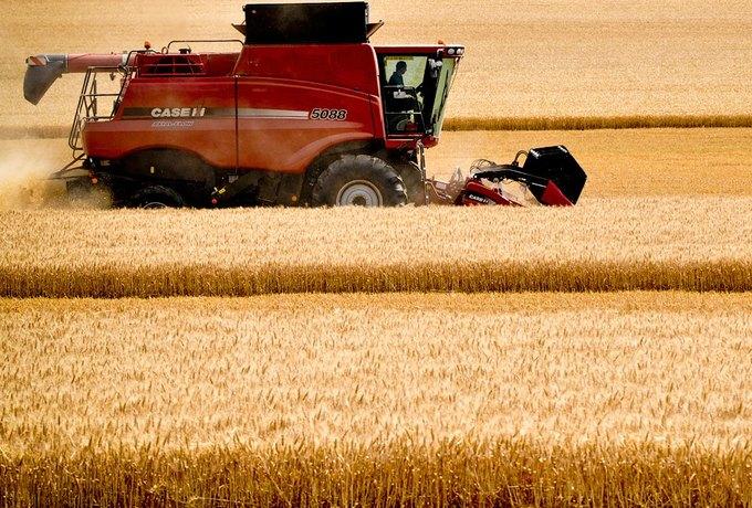 Почему человечеству грозит продовольственный кризис. Изображение № 3.