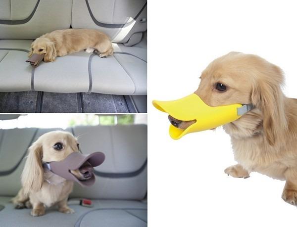Проект дизайнеров-юмористов Quack Muzzle . Изображение № 3.