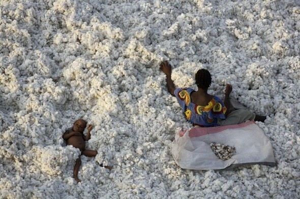 На уборке хлопка. Буркина-Фасо. Изображение № 11.