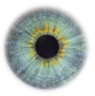 Фотограф Rankin — Eyescapes. Изображение № 14.