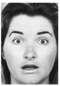 Узнай лжеца по выражению лица. Изображение № 7.