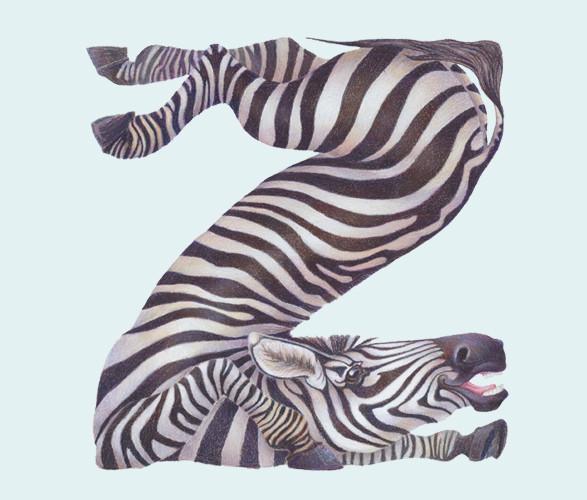 Животный алфавит. Изображение № 22.
