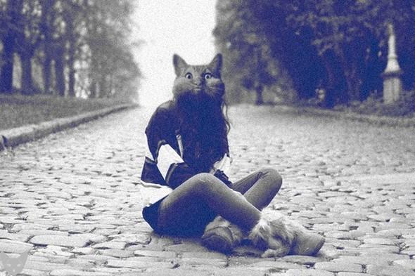 Культ личности кошки. Изображение № 4.