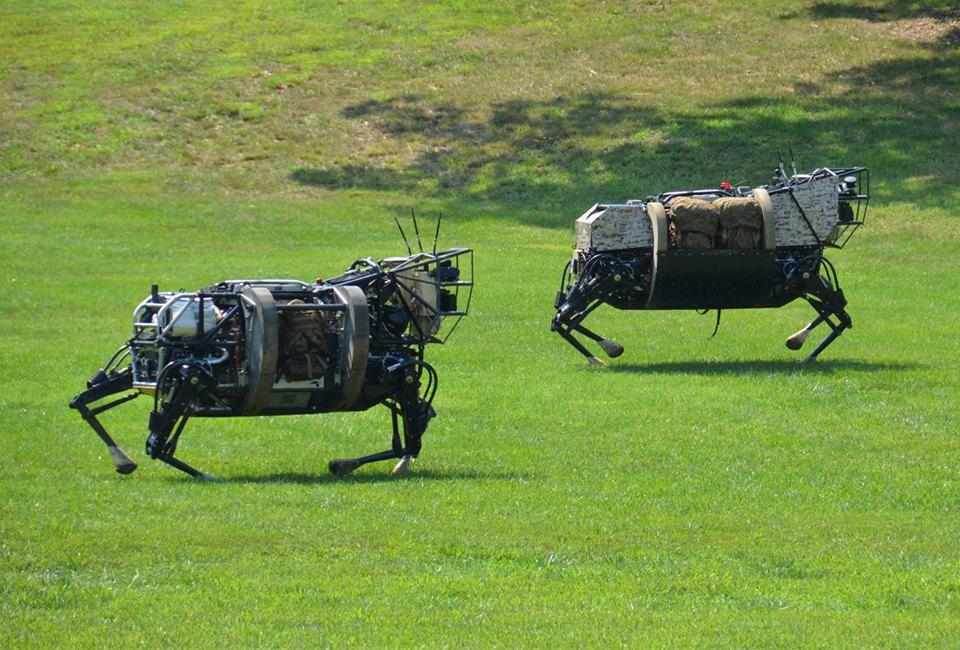 Фото и видео: роботы Boston Dynamics занимаются странными вещами. Изображение № 5.