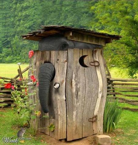 Какспрятать слона. Изображение № 11.