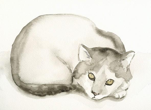 Изображение 17. Amber Alexander - животные, сияющие акварелью.. Изображение № 17.