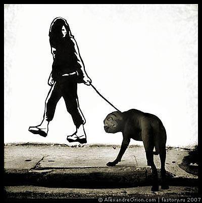 Граффити Александрэ Ориона. Изображение № 10.