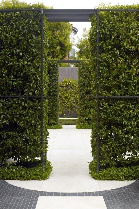 Зеленая резиденция SF от Lutsko Associates. Изображение № 11.