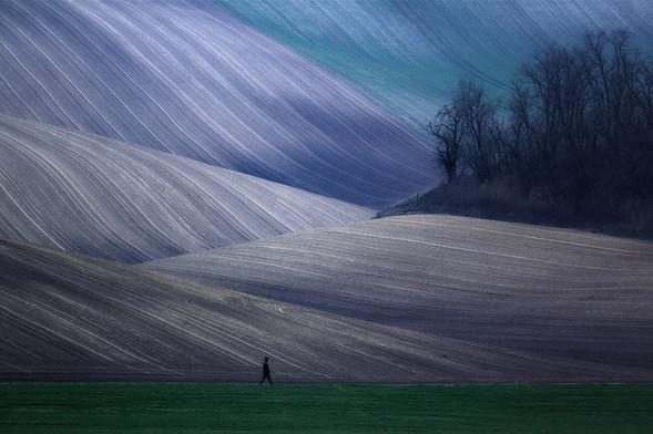 Marcin Sacha. Изображение № 24.