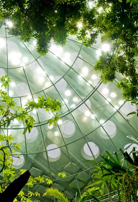 Академия подзелёным покрывалом. Изображение № 11.