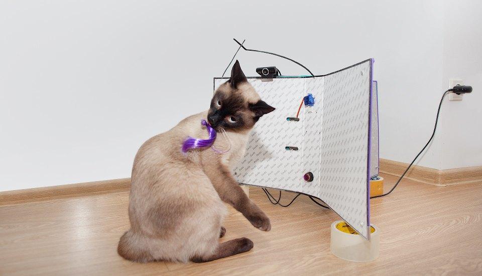 Как сделать фотобудку  для кота. Изображение № 18.