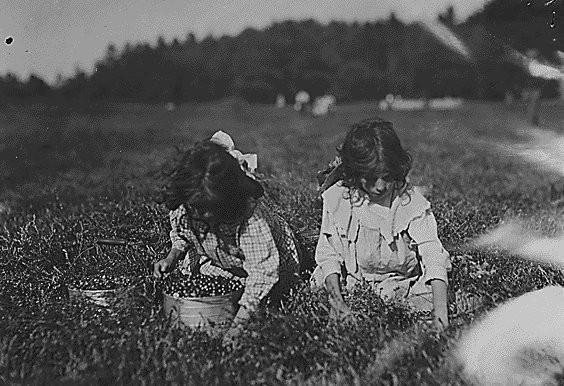 Эксплуатации детского труда в Америке (1910 год).И эмигранты США. Изображение № 19.