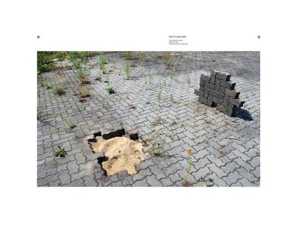 Не ждали: 8 альбомов о стрит-арте. Изображение № 3.