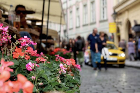 Latvia/Czech Republic. Изображение № 6.
