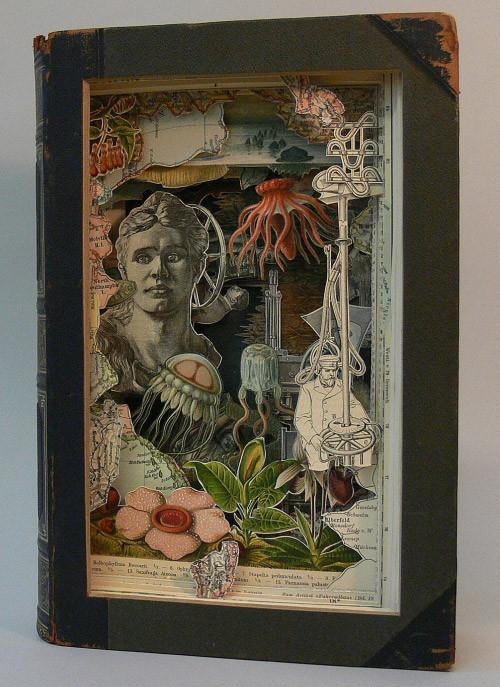 Книжные работы Alexander Korzer-Robinson. Изображение № 15.