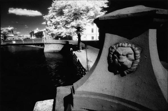Три альбома петербургских классиков фотографии. Изображение № 11.