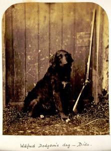 Льюис Кэрролл – фотограф. Изображение № 11.