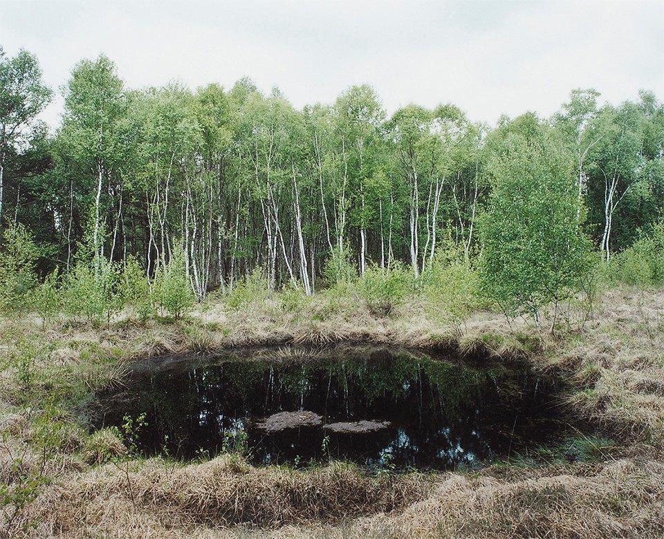 Галерея: как война изменила леса Германии. Изображение № 9.