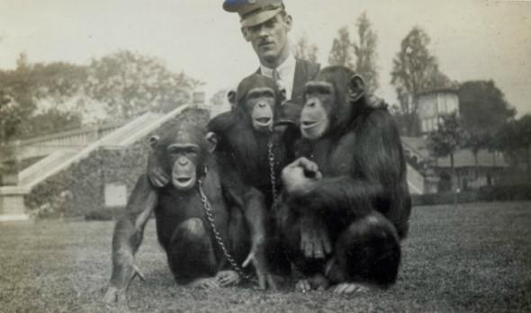 Лондонский Зоопарк 30-х. Изображение № 11.