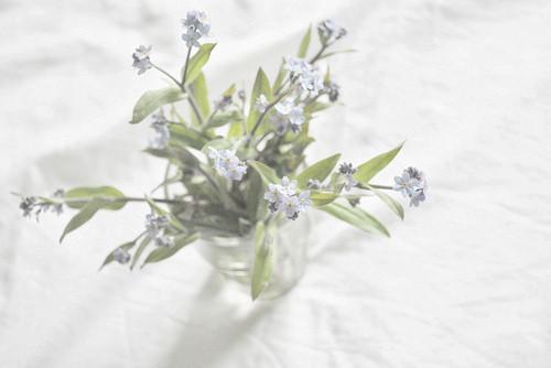 Изображение 4. Никогда не надо слушать, что говорят цветы. Надо просто смотреть на них и дышать их ароматом... Изображение № 4.