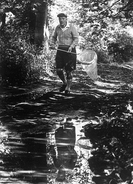 Признания человека-мотылька. Владимир Набоков. Изображение № 13.