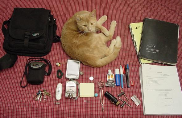 What's inyour bag?. Изображение № 5.