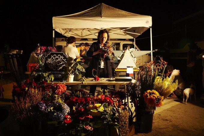 Японский художник сфотографировал бонсай в стратосфере . Изображение № 6.
