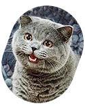 Некролог: Кот умер! Даздравствует кот!. Изображение № 4.