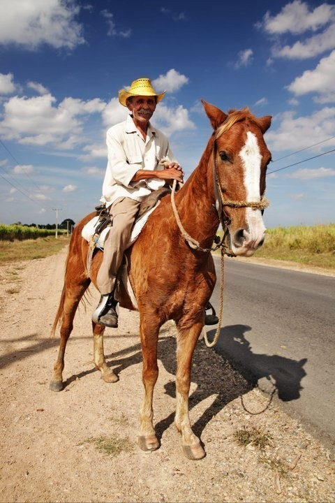 Изображение 29. Кубинский лук. Зима 2010/2011.. Изображение № 31.