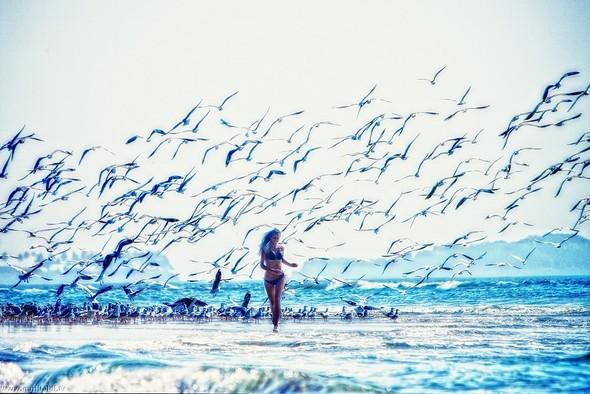 Пронзаясь махом крыльев - non stop. Изображение № 29.