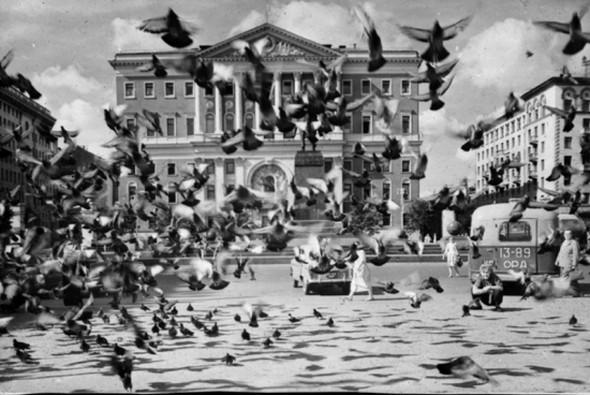 Голуби у Моссовета, 1950 г.. Изображение № 75.