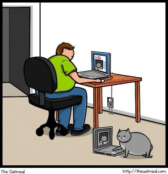 Cat vs. Internet. Изображение № 12.