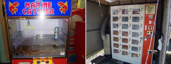 Vending Machines. Изображение № 6.