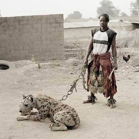 Hyena & Other Men. Изображение № 1.