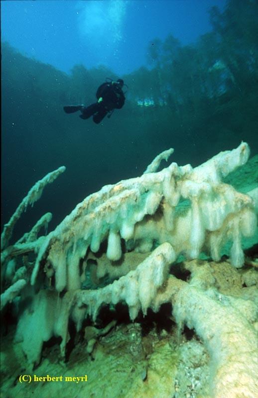 Фотограф Herbert Meyrl. Скамейки под водой. Изображение № 9.