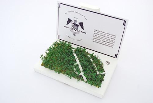 PostCarden - сад на вашем столе. Изображение № 11.