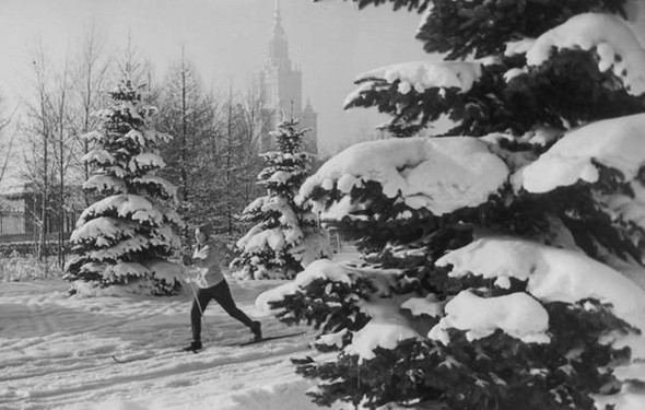 Зима на Ленгорах, 1950 г.. Изображение № 78.