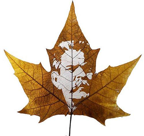 Резьба по листьям. Изображение № 12.