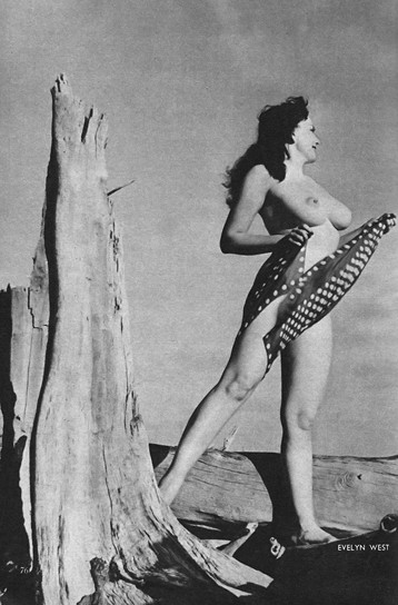 Части тела: Обнаженные женщины на фотографиях 50-60х годов. Изображение № 40.