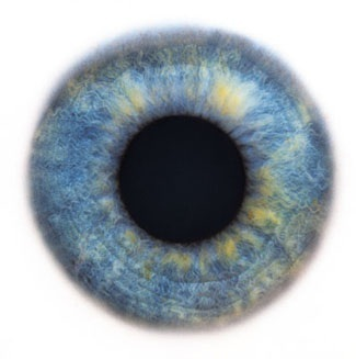 Фотограф Rankin — Eyescapes. Изображение № 18.