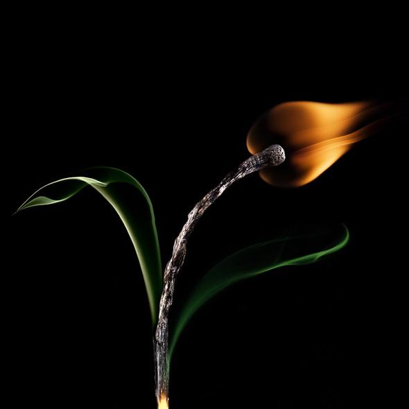 Картины из горящих спичек. Изображение № 29.