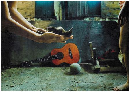 Ноги, гитара, женщина – идеальные натюрморты. Изображение № 2.