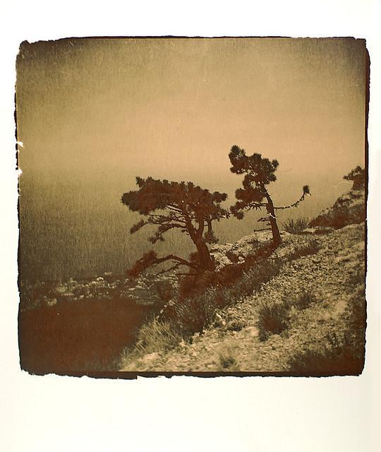 Изображение 9. Polaroidman Алексей Курбатов.. Изображение № 8.