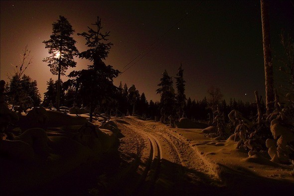 Изображение 45. Выходные в шведском лесу.. Изображение № 45.