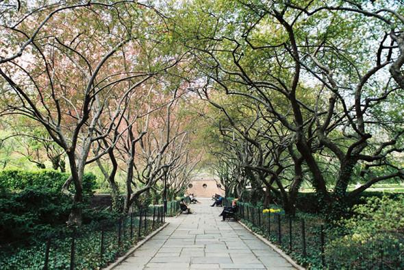 Изображение 15. 7 лучших городских парков мира.. Изображение № 29.